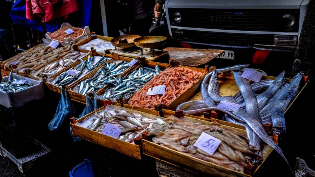 Market of the Seafood fair of Galicia in Valencia